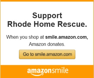 Main_Amazon_Smile_Updated