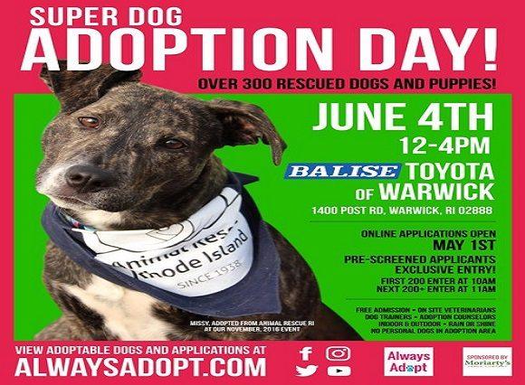 Annual Balise Toyota Superdog Adoption Event